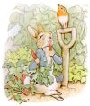 PeterRabbit8.jpg